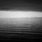 Horizon. by Steve Barnes
