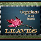 Leaves by LjMaxx