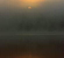 Through The Fog by Rebecca Brann