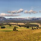 Mt Roland in Tasmania by Antonia Newall