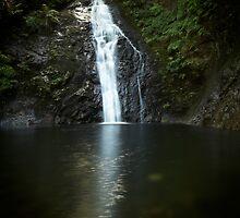 Crystal Falls by Bill vander Sluys