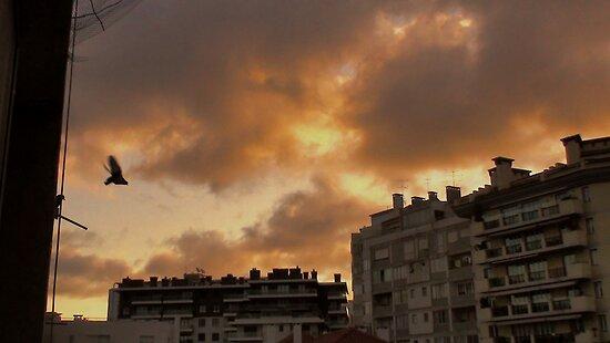 Burning Sky by Prates