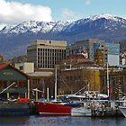 Winter Afternoon - Hobart by ShutterBuggz