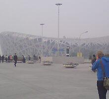 The Bird's Nest Stadium by barnsy