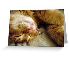 Sleepy Pocket Greeting Card
