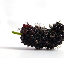hairy berry by sunith shyam