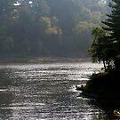 Misty Morning In Wisconsin Dells by kkphoto1