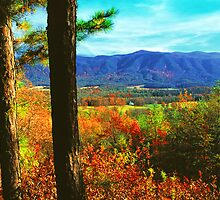 VIEW FROM RICH MTN.,AUTUMN by Chuck Wickham
