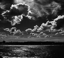 3D Clouds in Black and White, Bondi Beach by TheSpaniard