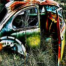 Herbie The Love Bug  2  ~   BoneYard Series  by Carla Jensen