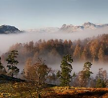 Looking over Langdale from Tarn Hows by Simon Hathaway