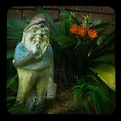 gnarly gnome in gnarden by ozzzywoman