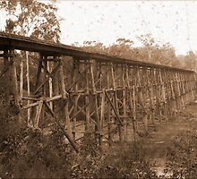 Noojee bridge again by Greg Carrick