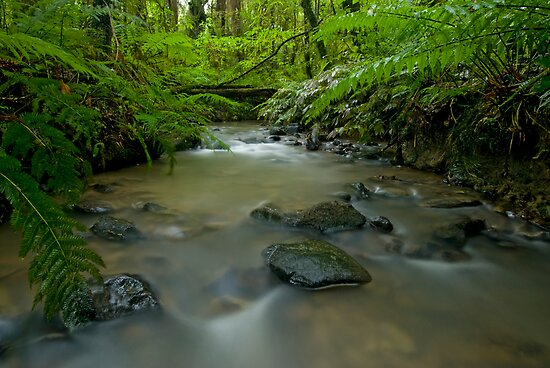 Beautiful New Zealand. by Michael Treloar