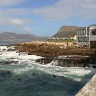 Rocks at Kalk Bay by Riaan Hefer