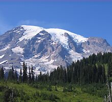 Mt. Rainier, South Side in Summer by Pat Yager