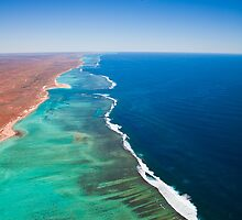 NINGALOO MAGIC by aabzimaging