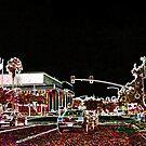 Tampa Nightlights by Daneann