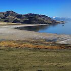Summer Antelope Island by Bellavista2