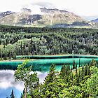 Emerald Lake, Yukon Territory on the Alaska Highway by Vickie Emms