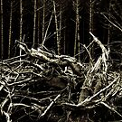 Spooky Forest Debris by yurix