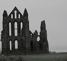Whitby Abbey by shane22