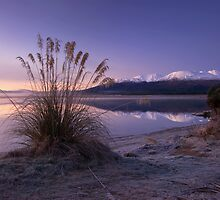 Morning Bliss. by Michael Treloar