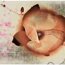 Wildflower by -Lilith-