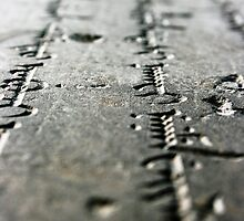 Tibetan Script by bendyphoto