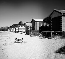 Mornington Peninsula  by Rosina  Lamberti