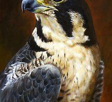 Proud - Peregrine Falcon by Arie van der Wijst