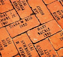 Red Bricks with a Purpose   ^ by ctheworld