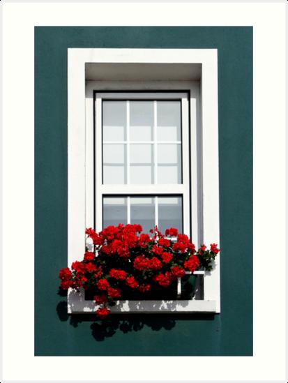 Gorey Window by Karen Millard