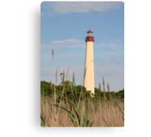 Cape May Lighthouse through the Reeds Canvas Print
