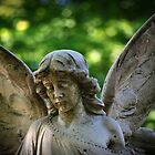 Concrete Angel by colleen e scott