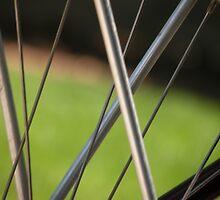 the world through a bicycle wheel by Dmitriy Smirnov