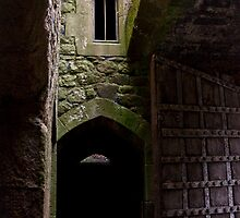 Dunster Castle Doors by jude walton