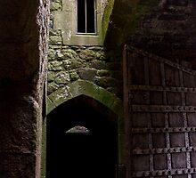 Dunster Castle Doors by jude walton