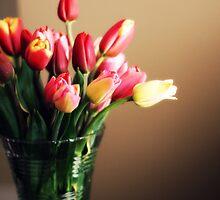 tulip bouquet by kirsten116