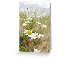 White n Yellow Lisfannon beach County Donegal Ireland Greeting Card