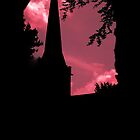 Spooky Silhouette by Andy Smith
