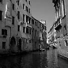Venice  by Jo O&#x27;Brien