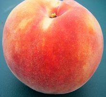 Perfect Peach... by Justine Kenney