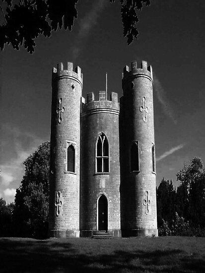 Blaise Castle by Dawn B Davies-McIninch