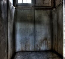 The Padded Cell by C Ballard