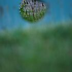 Hole by AylaM