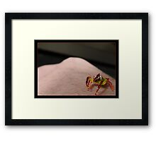 Look at the size of that Human! Framed Print