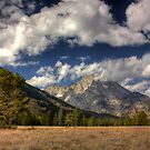 Grand Tetons by steini