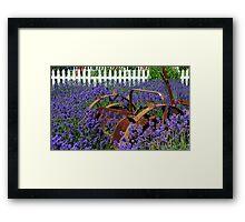 Adrift in the Lavender Framed Print