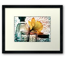 Daffodil - Exercise in Translucency Framed Print